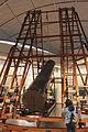 Real Observatorio de Madrid - Telescopio Herschel 01.jpg