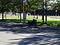 Recumbent tricycle on Lower Sherbourne, 2016-08-07 (7).JPG - panoramio.jpg