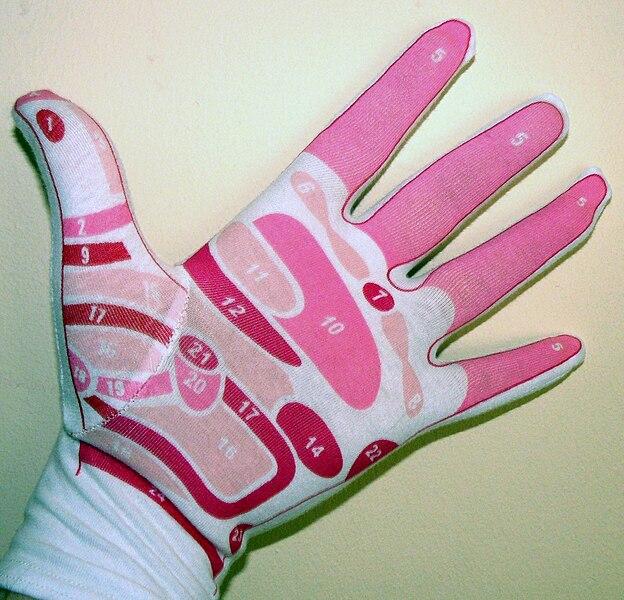 Ficheiro:Reflexology of the Hand.JPG
