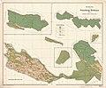 Reichenau Gemarkungsplan 1876.jpg
