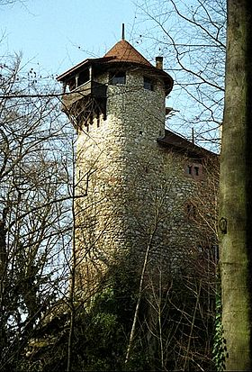 Image illustrative de l'article Burg Reichenstein