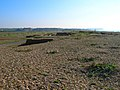 Remains of Chailey Marine Hospital - geograph.org.uk - 592496.jpg