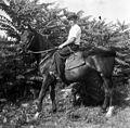 Rider, saddle Fortepan 77608.jpg