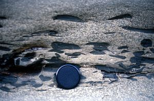 Rip-up clasts - Shale rip-up clasts in a nearshore marine sandstone, Matilija Fm. Topatopa Mountains, California.