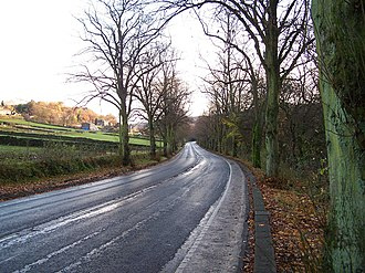 River Rivelin - A long stretch of Rivelin Valley Road with its lime trees lining it.