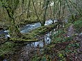 River Bovey and path - geograph.org.uk - 1084997.jpg