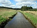 River Carron in Carron Valley Forest - geograph.org.uk - 171374.jpg