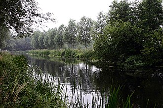 River Chelmer - River Chelmer near Little Baddow