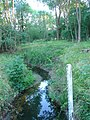 River Mole at Granthams Bridge (Rusper - Ifield Road), Near Ifield, Crawley, West Sussex - geograph.org.uk - 27856.jpg