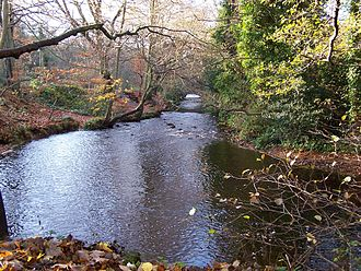 River Rivelin - The river at the site of Walkley Bank Tilt.