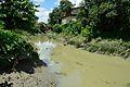 River Saraswati - Jadu Nath Hati Ghat - Sankrail - Howrah - 2013-08-15 1541.JPG