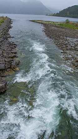 River full of Salmons and Sea Trout - panoramio.jpg