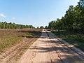 Road - panoramio (171).jpg
