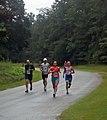 Road Runners (7888809812).jpg