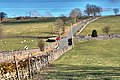 Road to Crosby Ravensworth - geograph.org.uk - 1202158.jpg