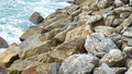 Rocks on the beach (39206351591).png