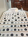 Roman coins at Side, Antalya.jpg