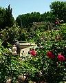 Rose Garden (39584754).jpeg