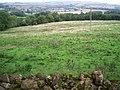 Rough grazing - geograph.org.uk - 243282.jpg