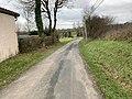 Route Lingent St Jean Veyle 6.jpg