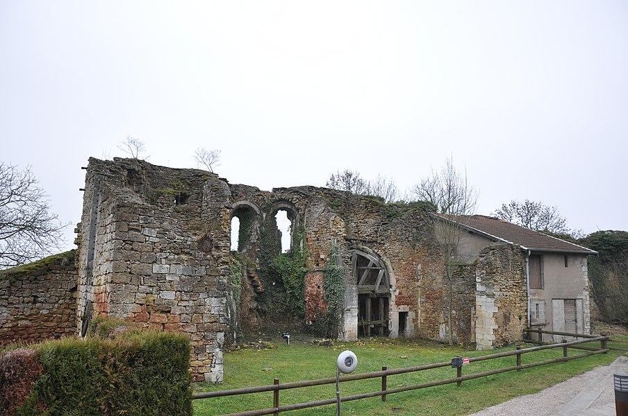 Ruines de la chapelle des Templiers, Mousson, Lorraine, France