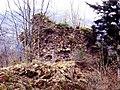 Ruines du Rosemont. (1).jpg
