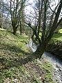 Ruisseau a domloup - panoramio.jpg