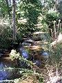 Ruisseau st jean Benquet 1.JPG