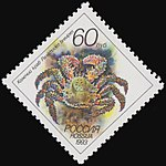 Russia stamp 1993 № 105.jpg