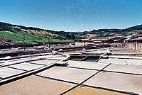 Salinas de Rio Maior - Portugal (411974398).jpg