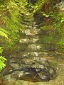 Salto de agua en el Bosque de Cea, en la ribera del rio Mampodre- Parres , Asturias. - panoramio.jpg
