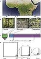 Sampling design across Gabonese land use change.jpg