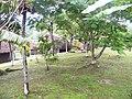 San Ignacio Laslovarga010.JPG