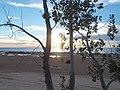 Sandy Flats - Silver Lake Dunes - panoramio.jpg