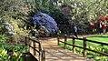 Savill Garden (33524526850).jpg