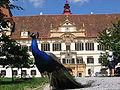 Schloss eggenberg.jpg