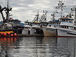 Seine Boats docked at Don Statter Harbor.JPG