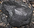 Semi-anthracite coal (Langhorne Coal, Lower Mississippian; Cloyds Mountain roadcut, Valley Coalfield, Virginia, USA) 13 (29850569384).jpg