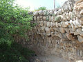Sevastopol Strabon's Khersones antique greek settlement-61.jpg