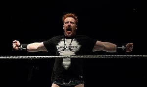 Royal Rumble (2012) - Sheamus won the 2012 Royal Rumble.