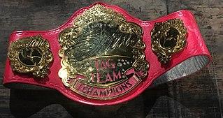 Shine Tag Team Championship Professional wrestling womens tag team championship