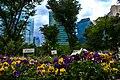 Shinjuku-Chūō-Kōen-flowerbed.jpg