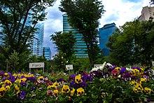 Shinjuku Wikipedia