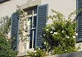 Shutters and White Flowers (8623835837).jpg