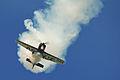 Shuttleworth Flying Day - June 2013 (9124630980).jpg