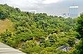 Singapore Southern Ridges 16.jpg