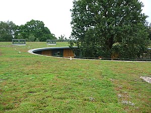 British Horse Society - A view across the Sky Garden green roof showing the ancient oak tree standing at the centre of the British Horse Society Headquarters.