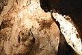 Sloupsko-šošůvské-jeskyně-interiér2018e.jpg