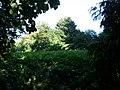Smarmore, Co. Louth, Ireland - panoramio (10).jpg