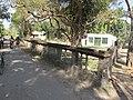 Smashan Kalitala - Baduria - North 24 Parganas 2012-02-24 2361.JPG